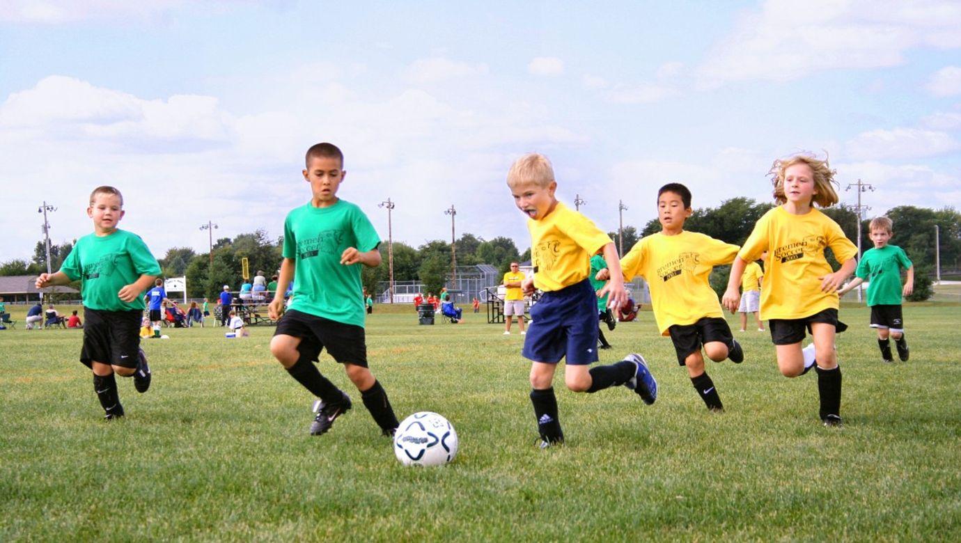 team_of_young_footballers_football_match_team_juniors_football_field_lawn_ball_sport-594839.jpg!d