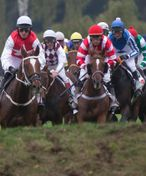 Do 131. Velké pardubické je přihlášeno devatenáct koní