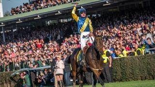 Koně do Velké pardubické přivede její vítěz Tzigane du Berlais