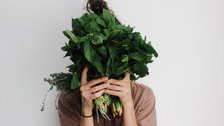 Je čas nasbírat si bylinky. Které stojí za to a jak je použít?