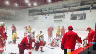 Přípravu hokejové Slavie zastavila nákaza koronavirem