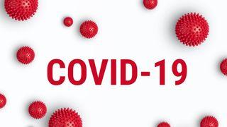 Plzeňští fotbalisté měli v týmu pozitivní nález na koronavirus