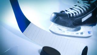 První hokejová liga se bude hrát s play off a bez sestupu