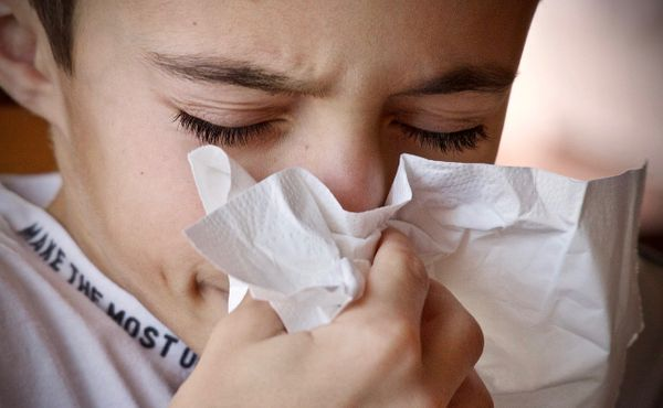 Odbornice radí, jak přestane být jarní alergie vaším nepřítelem
