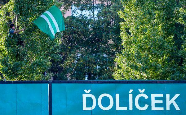 VIDEO: Fanoušek Bohemky chtěl vidět fotbal, tak se zavěsil na strom