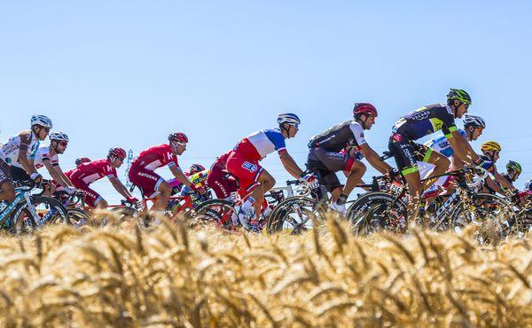 Tour de France hledá lídra. Ne toho žlutého, toho opravdového